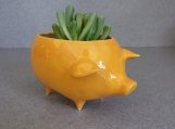 Vintage ceramic pig planter orange/yellow  ready to ship
