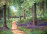 Wooded Path - AGS 092