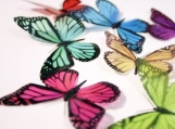 B001 - 12 x 3D Monarch Butterflies in Solid Colours