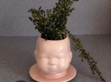 Baby doll head planter Satin China flesh # 03262015