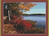 Acadia Landscape Cross Stitch Pattern