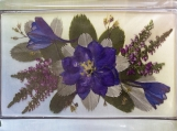 Real Pressed Blue Larkspur Blossom Rectangle Glass Paperweight