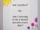 Am I Perfect?