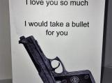 I'd Take a Bullet