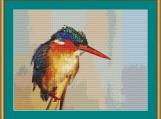 Kingfisher Cross Stitch Pattern