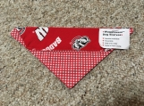 Badger Dog Scarf
