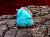 Sterling Silver and Godber/Burnham Turquoise Ring