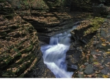 "Watkins Glen in Fall 16"" x 20"" fine art photograph poster"