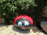 Lady Bug Hand Painted Rock 5x5 Red