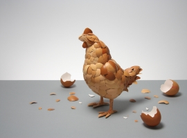 Chicken made from eggshells.